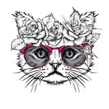 Hand draw portrait of cat wearing a wreath of flowers. Vector illustration Stock Photos
