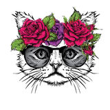Hand draw portrait of cat wearing a wreath of flowers. Vector illustration Royalty Free Stock Photo