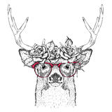 Hand draw portrait of deer wearing a wreath of flowers. Vector illustration Stock Image