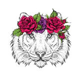 Hand draw portrait of tiger wearing a wreath of flowers. Vector illustration Stock Photography