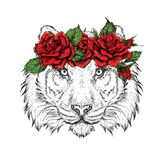 Hand draw portrait of tiger wearing a wreath of flowers. Vector illustration Royalty Free Stock Images