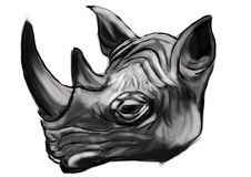 Hand draw rhino head Stock Photos