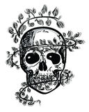 Hand draw Scull with leaves Stock Images