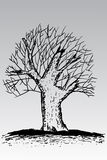 Hand draw sketch, dead tree Royalty Free Stock Photo