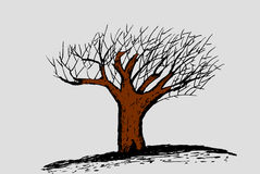 Hand draw sketch, dead tree Stock Photo