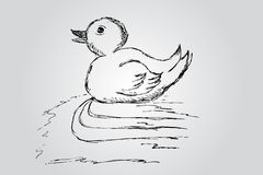 Hand draw sketch, duck Royalty Free Stock Images