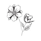 Hand, draw, sketch, flowers, vector, illustration, isolated on white background Royalty Free Stock Photo
