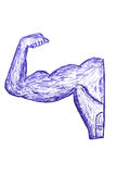 Hand Draw Sketch of Muscle Man Stock Image