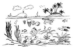 Hand draw sketch of ocean life. Vector hand draw sketch of ocean life royalty free illustration