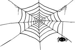 Hand Draw sketch, spider and web Stock Photography