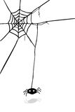 Hand Draw sketch, spider and web Stock Photos