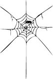 Hand Draw sketch, spider and web Royalty Free Stock Photo