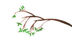 Hand draw sketch of tree branches Royalty Free Stock Photos