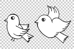 Hand draw sketch, two Birds at transparent effect background Stock Images