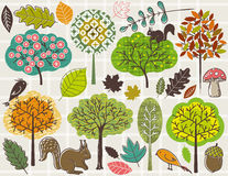 Hand draw  trees and leafs over checked background Stock Photo