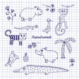 Hand-draw Tropical Animals Stock Image