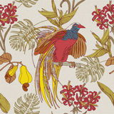 Hand draw tropical flowers and birds. Stock Photography