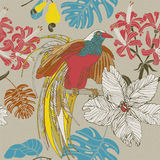 Hand draw tropical flowers and birds. Stock Image