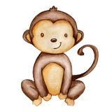 Hand draw watercolor monkey isolated. Cute little monkey on white royalty free illustration