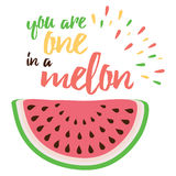 Hand drawin vector abstract fruit. Watermelon print. Sign. Stock Photo