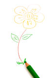 Hand Drawing. Flower on Art Book Royalty Free Stock Images