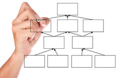 Hand drawing. An organization chart on a white board stock images