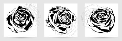 Hand drawing abstract rose. Vector Stock Photo