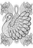 Hand drawing artistic Swan in flowers for adult coloring pages. A4 size in doodle, zentangle tribal style, ethnic ornamental patterned tattoo, logo, t-shirt or Royalty Free Stock Image