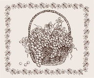 Hand drawing basket with black  ripe grape Royalty Free Stock Photo