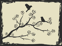 Hand drawing of birds and plum blossom Royalty Free Stock Photo