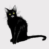 Hand drawing a black cat with green eyes. Royalty Free Stock Photography