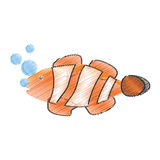 Hand drawing clown fish coral anemone reef bubbles. Illustration eps 10 Royalty Free Stock Image