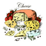 Hand drawing of dairy products, cheese, herbs and Royalty Free Stock Image