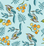 Hand drawing decorative seamless background with birds,berries a Royalty Free Stock Photo
