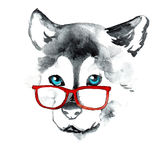 Hand drawing dog in red glasses Royalty Free Stock Image
