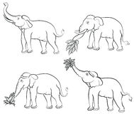 Hand drawing elephant set Stock Images