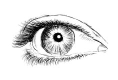 Hand drawing eye on a white background. Royalty Free Stock Photos