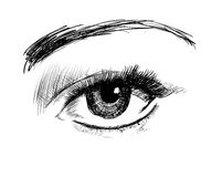 Hand drawing eyes on a white background. Stock Photos