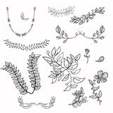 Hand drawing floral leaf ornament vector sketch flower illustration Stock Photography