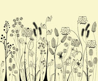 Hand drawing flowers and herbs Royalty Free Stock Photography