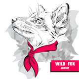 Hand drawing fox with a pink headscarf on the neck. Vector illustration Royalty Free Stock Photography