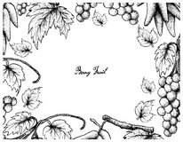 Hand Drawing Frame of Assyrtiko Grapes and Elongated Grapes. Berry Fruits, Illustration Frame of Hand Drawn Sketch Bunch of Fresh Juicy Assyrtiko or Asyrtiko Royalty Free Stock Photos