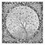 Hand drawing, graphic picture on the theme tree flowering. Stock Images