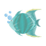 Hand drawing green fish marine species bubbles Royalty Free Stock Photos