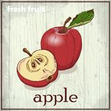 Hand drawing illustration of apple. Fresh fruit sketch background Stock Photography