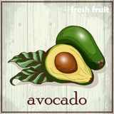 Hand drawing illustration of avocado. Fresh fruit sketch background Royalty Free Stock Image