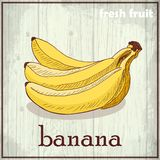 Hand drawing illustration of banana. Fresh fruit sketch background Royalty Free Stock Image