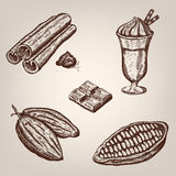 Hand drawing illustration of cacao beans, chocolate, cup of hot chocolate, cinnamon. Stock Photos