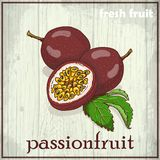 Hand drawing illustration of passionfruit. Fresh fruit sketch background Royalty Free Stock Photography