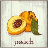 Hand drawing illustration of peach. Fresh fruit sketch background Royalty Free Stock Photos